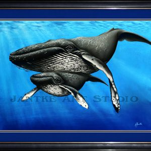 humback-and-calf-main-baleen-whale-endangered-baby-pastel-painting-peter-jantke-art-studio