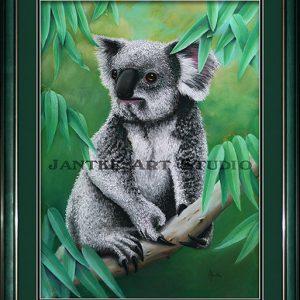 koala-main-northern-australian-native-animal-endangered-pastel-painting-peter-jantke-art-studio