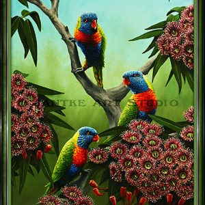 rainbows-and-reds-main-rainbow-lorikeet-australian-native-birds-oil-on-canvas-peter-jantke-art-studio