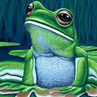 https://jasservices.com.au/product/green-tree-frog/
