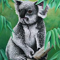 https://jasservices.com.au/product/southern-koala/