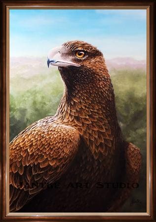 wedgetail-eagle-main-australian-native-bird-raptor-oil-on-canvas-peter-jantke-art-studio