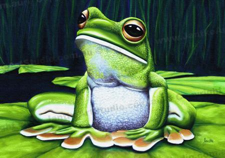 PRC004-main-jas-green-tree-frog-australian-native-sitting-jantke-art-studio-print