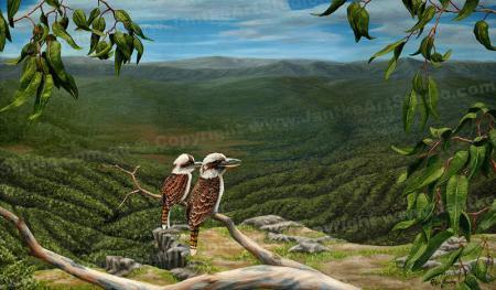 PRC005-main-jas-kookaburra-tamborine-queensland-australian-native-bird-jantke-art-print