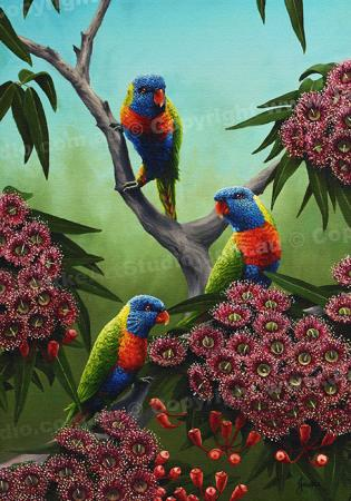 PRC032-main-jas-rainbow-lorikeets-australian-native-birds-peter-jantke-art-print