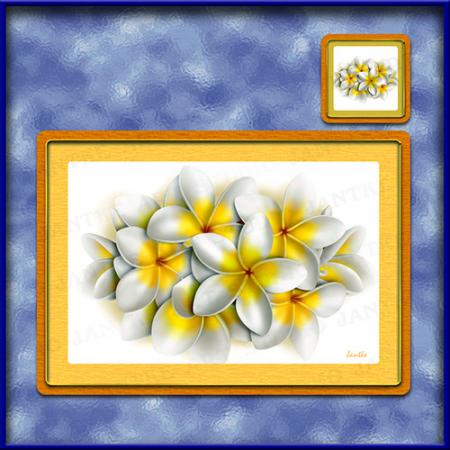 TM002WT-A3-jas-main-frangipani-bouquet-plumeria-flower-table-mat-white-jantke-art-studio