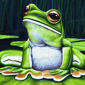 PRC004-main-jas-green-tree-frog-australian-native-sitting-jantke-art-studio-print
