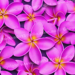 PRC023PK-main-jas-flowers-frangipani-plumeria-madness-pink-jantke-art-print