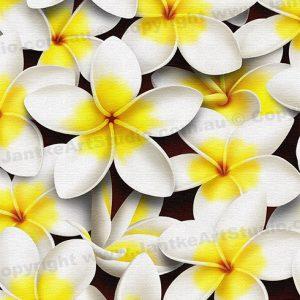 PRC023WT-main-jas-flowers-frangipani-plumeria-madness-white-jantke-art-print