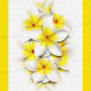 PRC024WT-main-jas-flower-frangipani-plumeria-bouquet-white-jantke-art-print