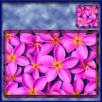 https://jasservices.com.au/product/tm003pk-frangipani-madness-tablemats-pink/
