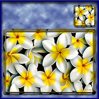 https://jasservices.com.au/product/tm003wt-frangipani-madness-tablemats-white/