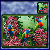https://jasservices.com.au/product/tm004-rainbow-lorikeets/